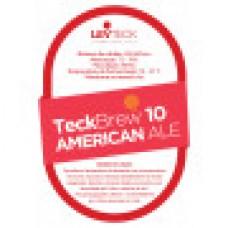 Fermento American Ale – TeckBrew 10 - Sachê