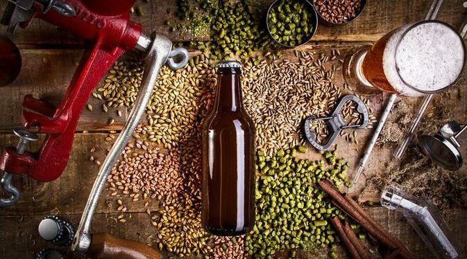 os processos da produção de cerveja conheça cada um deles
