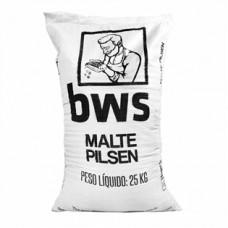 Malte Pilsen BWS Belga - Saca 25kg